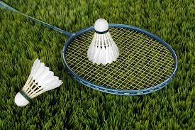 badmintonnature